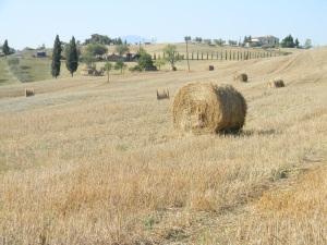 italia2011 981